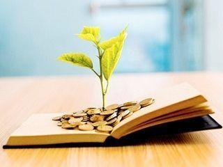 Educación financiera representada a través de un libro, de dinero, y de una planta en proceso de crecimiento