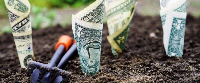 billetes brotando de la tierrra